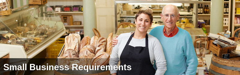 Small Business Requirements