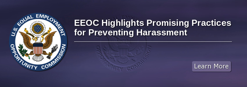 Promising Practices for Preventing Harassment